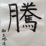 2013_騰